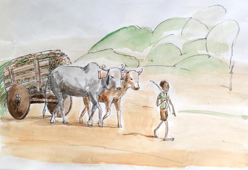 Ilustração original pintada a mão Eu não sei de qual África veio o meu bisavô!