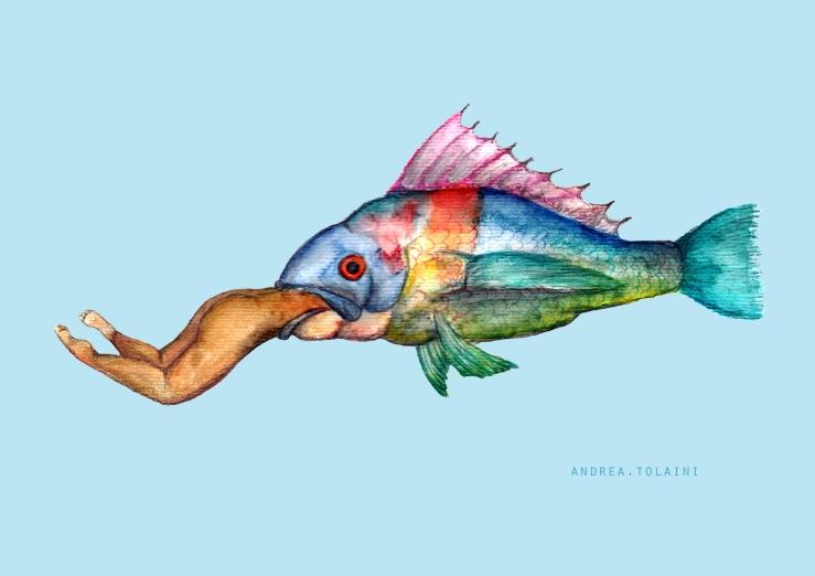 Peixe Engole - Da Obra Andréa Tolani