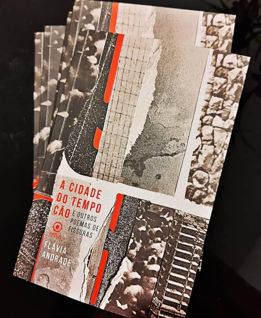 O primeiro livro da autora (responsável por engajar a artista na luta por um espaço diverso e amplo)